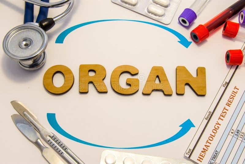 Foto för organtransplantationbegrepp Ordorganet lade in bokstäver omges av två pilar och medicinska förnödenheter och utrustning: arkivfoto