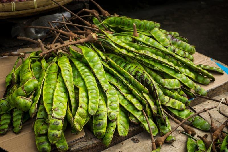 Foto för Petai exotiskt matböna som tas i bogor jakarta indonesia royaltyfria bilder