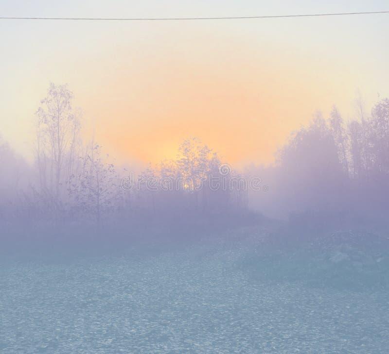 Foto filtrada de la subida del bosque del otoño, opinión del pecado del camino fotografía de archivo