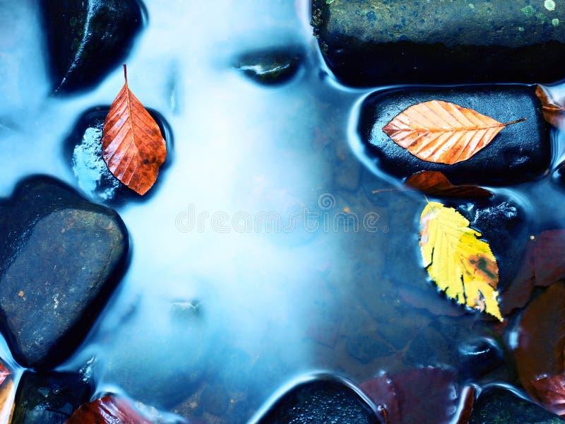 Foto filtrada O cascalho no rio da montanha coberto com a queda sae imagem de stock