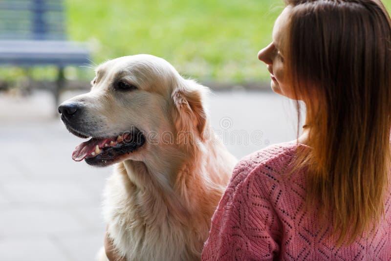 Foto från baksida av kvinnan med labrador royaltyfria foton