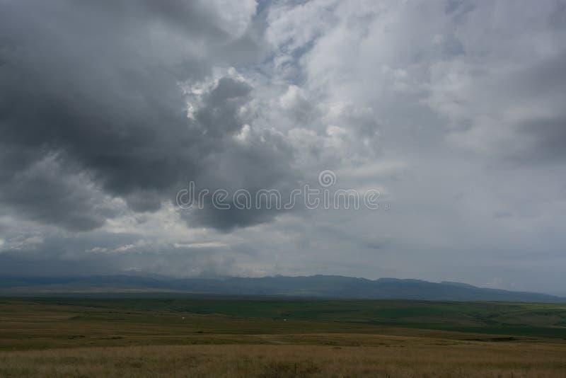 Foto gemacht von einer H?he Gr?nes Feld mit B?umen nave stockfotos