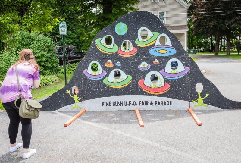 Foto giusta Opp del disco volante del UFO di Bush del pino immagine stock