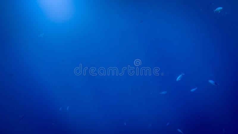 Foto hermosa de los rayos del sol que brillan a trav?s de superficie del mar profundo fotos de archivo