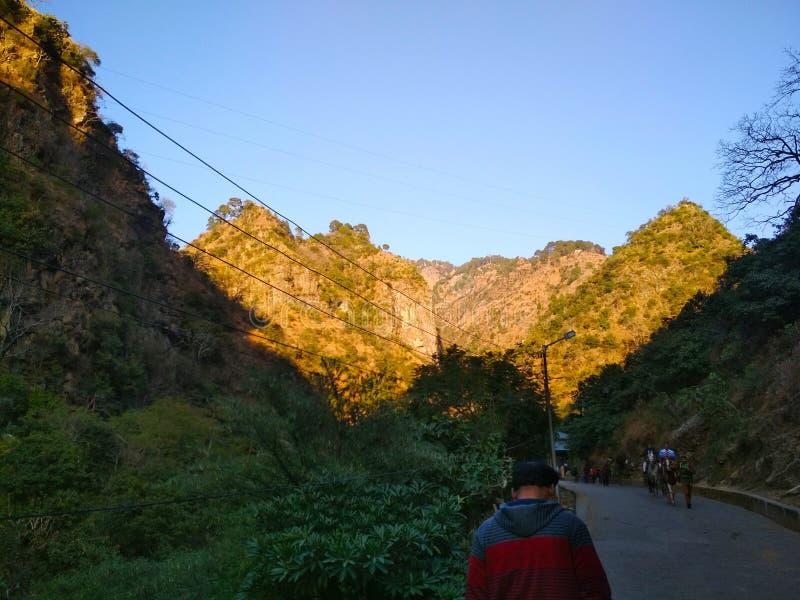 Foto impressionante della montagna e degli alberi fotografia stock libera da diritti