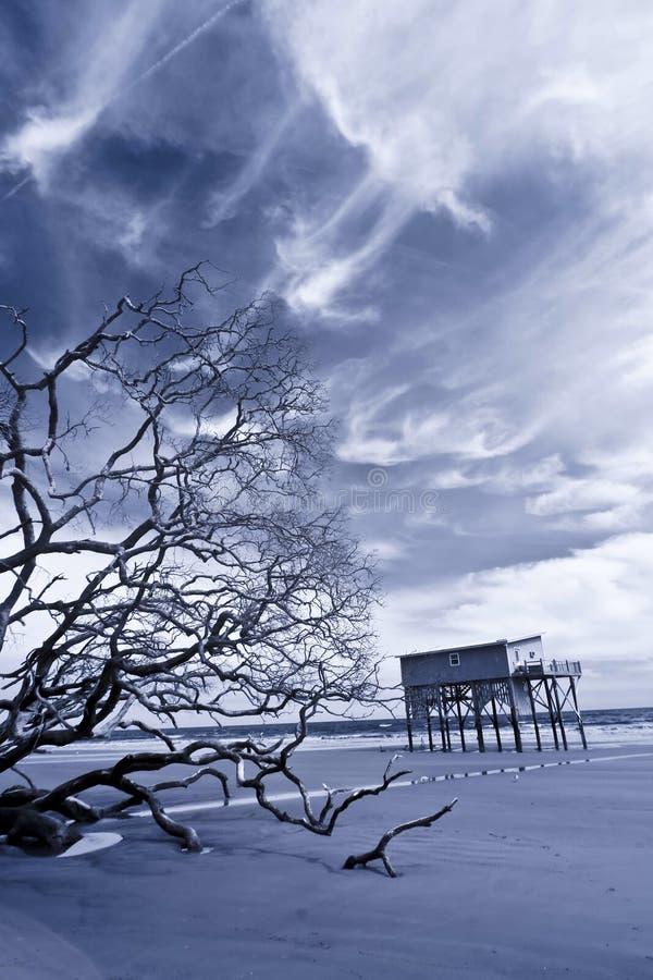 Foto infrarossa della casa sugli stilts immagine stock for Programma di disegno della casa libera