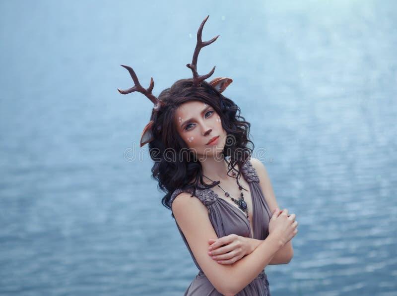 Foto interessante dei cervi davanti al lago del lagle, caratteri della foresta leggiadramente, immagine della madre di un donna-f immagine stock