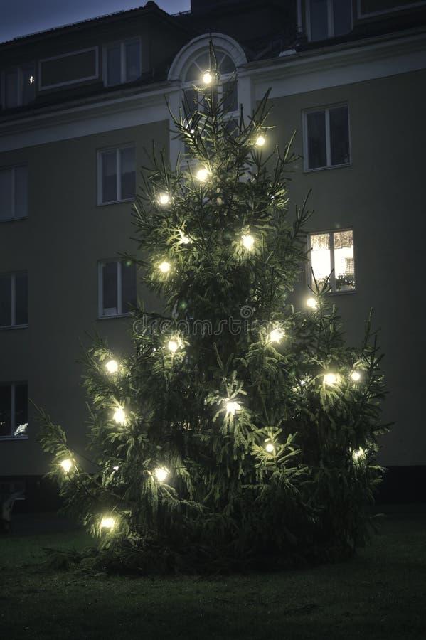 Foto invierno y del específico hermosos de la Navidad Árbol de navidad con las bombillas y helada en el invierno Foto con la casa imagen de archivo