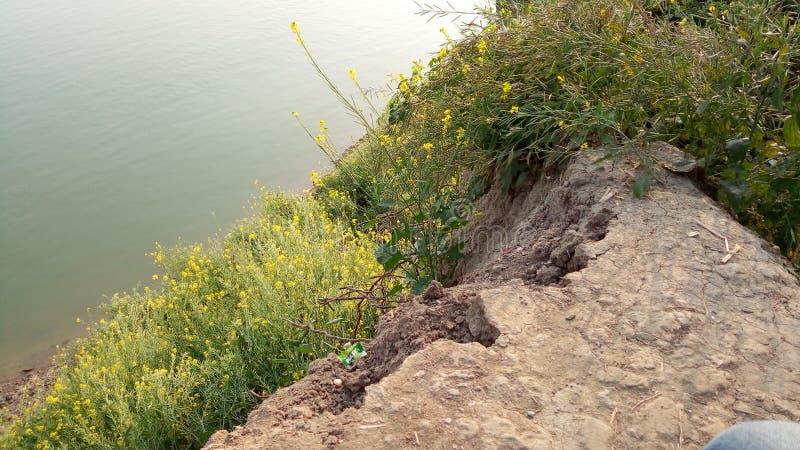 Foto lateral del río fotografía de archivo