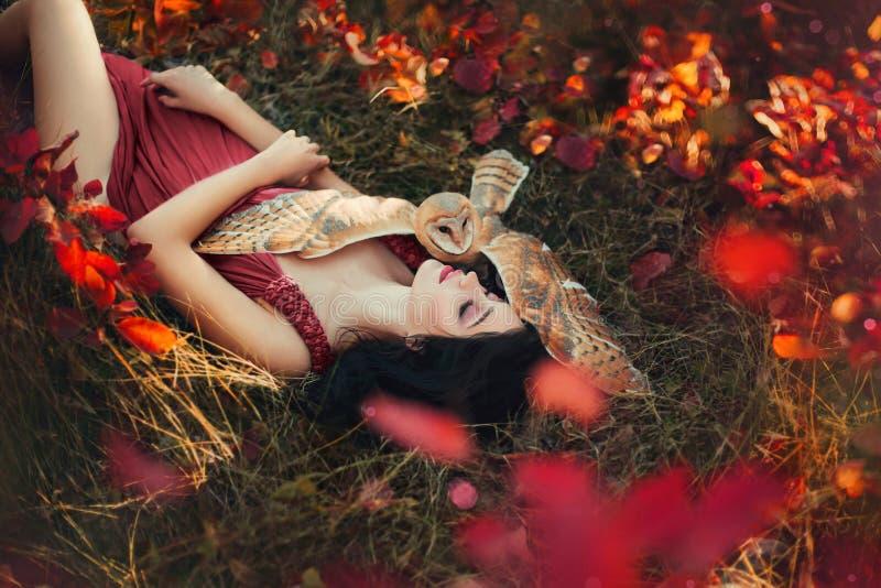 Foto luminosa nelle tonalità di Borgogna, ragazza nel colore scuro del vestito della Marsala immagini stock libere da diritti