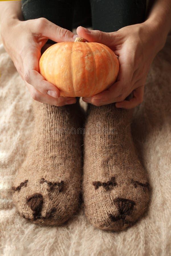 Foto macia dos pés da mulher em peúgas engraçadas bonitos do marrom do urso na cama com pouca abóbora decorativa, autum monocromá fotos de stock royalty free