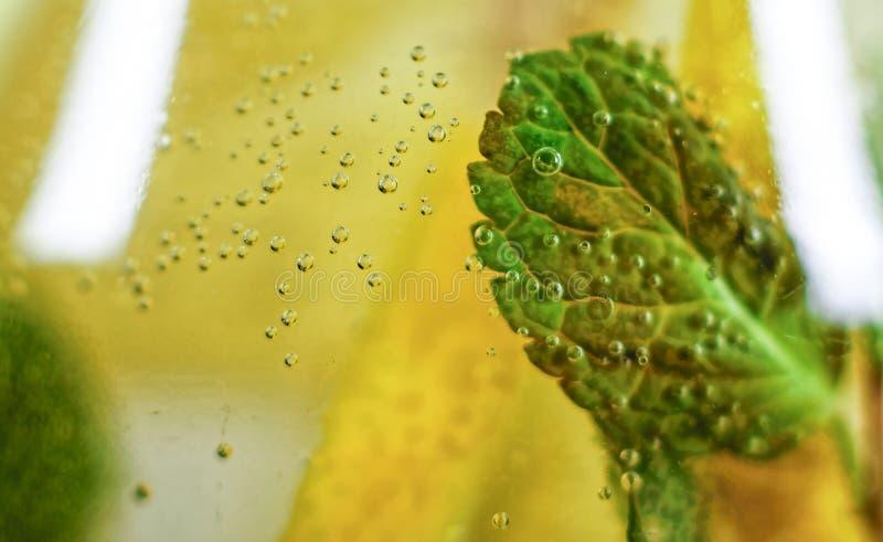 Foto macro água, citrino, cocktail, frio, bebida, fruto, hortelã, verão, desintoxicação fotos de stock