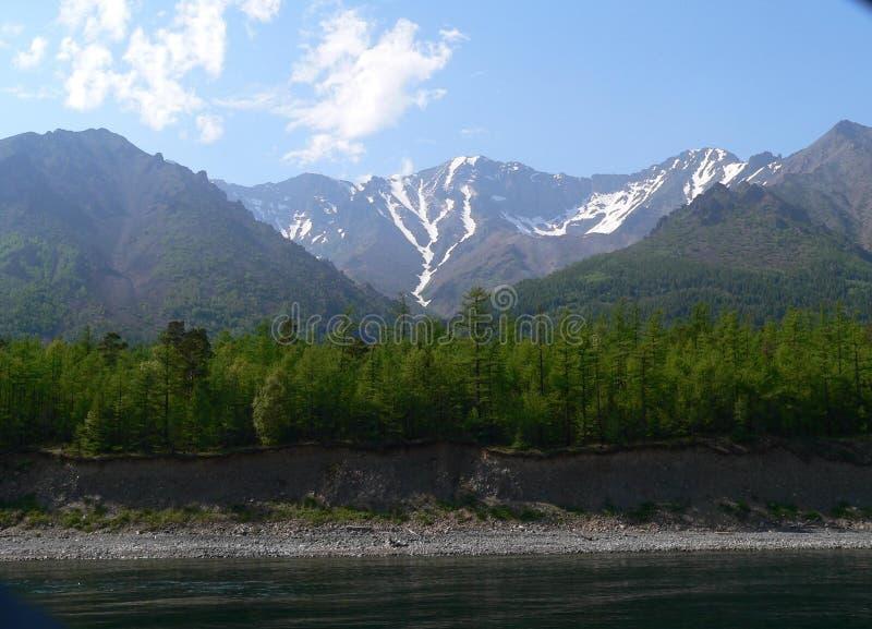 Foto macro com um fundo decorativo da paisagem europeia as terras da floresta da relíquia na costa do Lago Baikal fotografia de stock