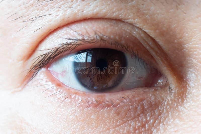 Foto macro do olho humano vasos sanguíneos e pestanas no foto de stock