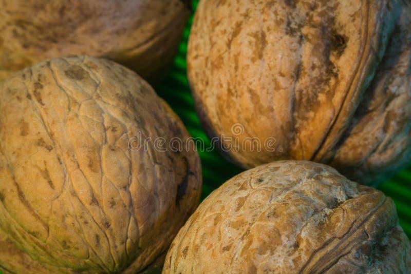 Foto macro Nuts imagem de stock royalty free