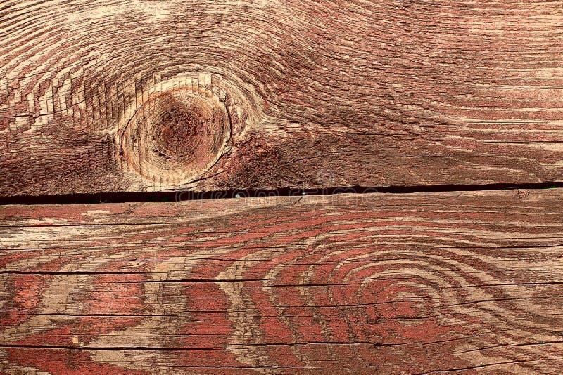 Foto macro patern de madeira vermelha foto de stock