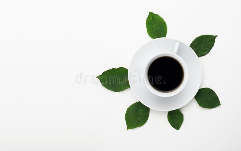 Foto minimalista da forma e da beleza Conceito do minimalismo Vista superior do café no fundo branco com folhas frescas foto de stock royalty free