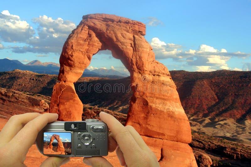Foto-Montage empfindlicher Bogen lizenzfreie stockbilder