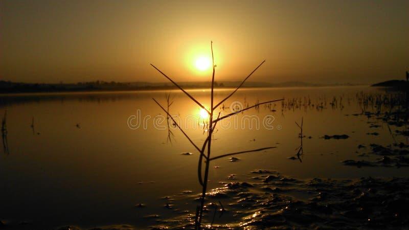 Foto natural, Lakeview, sol fotos de archivo libres de regalías
