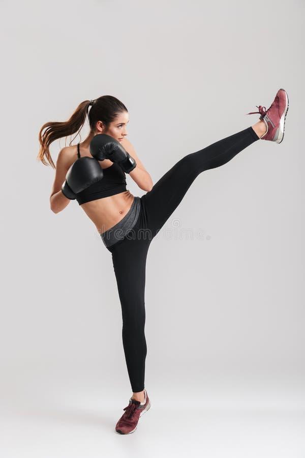 Foto no perfil da mulher moreno focalizada que faz o exercício kickboxing fotografia de stock royalty free