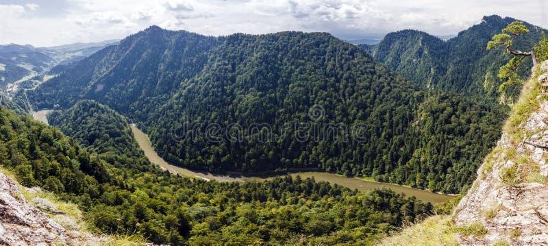 Foto panorâmico da garganta espetacular do rio em Pieniny, Polônia. imagem de stock