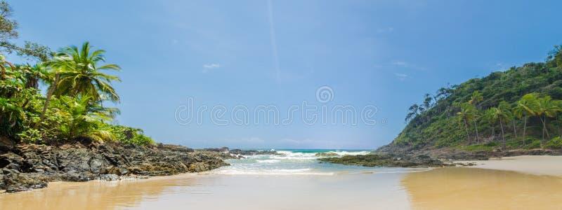 Foto panorâmico da praia de Itacarezinho, das árvores de coco, da vegetação intensa e de grandes pedras no encontro com o mar fotografia de stock royalty free