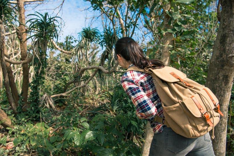 Foto posteriore di vista di giovane ricercatore femminile della giungla immagini stock