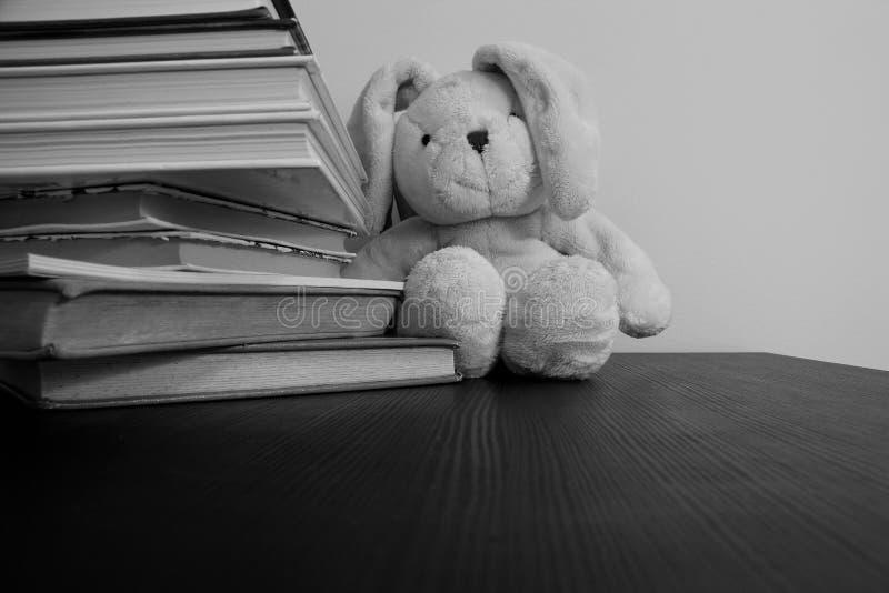 Foto preto e branco de um brinquedo do luxuoso do coelho que senta-se no fundo de livros empilhados fotos de stock royalty free