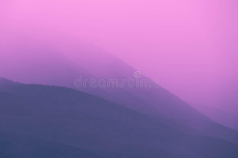 Foto que representa el bosque místico escénico y de niebla Mañana de niebla adentro imagen de archivo