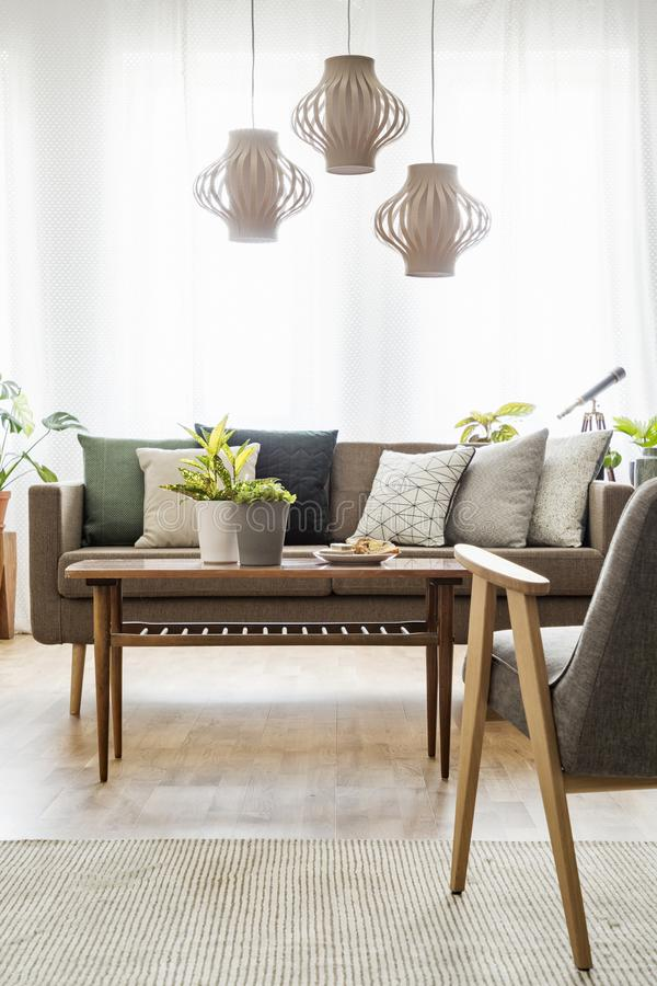 Foto reale di una tavola con le piante che stanno fra un sofà con la c immagini stock libere da diritti