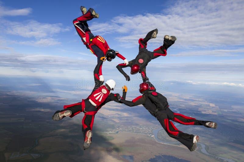 foto som skydiving royaltyfri foto