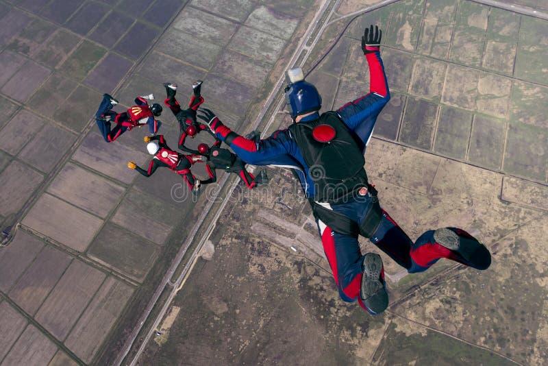 foto som skydiving fotografering för bildbyråer