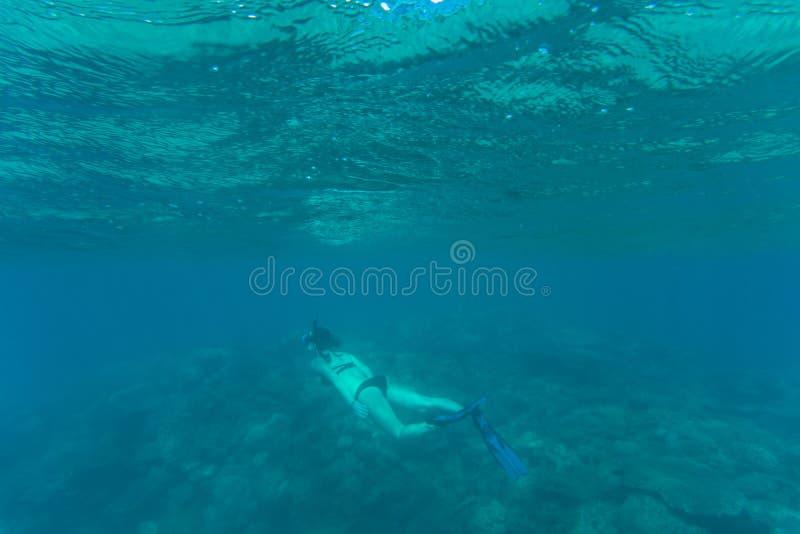 Foto subacuática de bucear de la mujer y del salto libre en un agua tropical clara en el arrecife de coral Mar subacuático fotografía de archivo libre de regalías