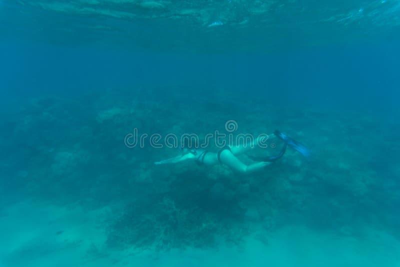 Foto subacuática de bucear de la mujer y del salto libre en un agua tropical clara en el arrecife de coral Mar subacuático fotos de archivo