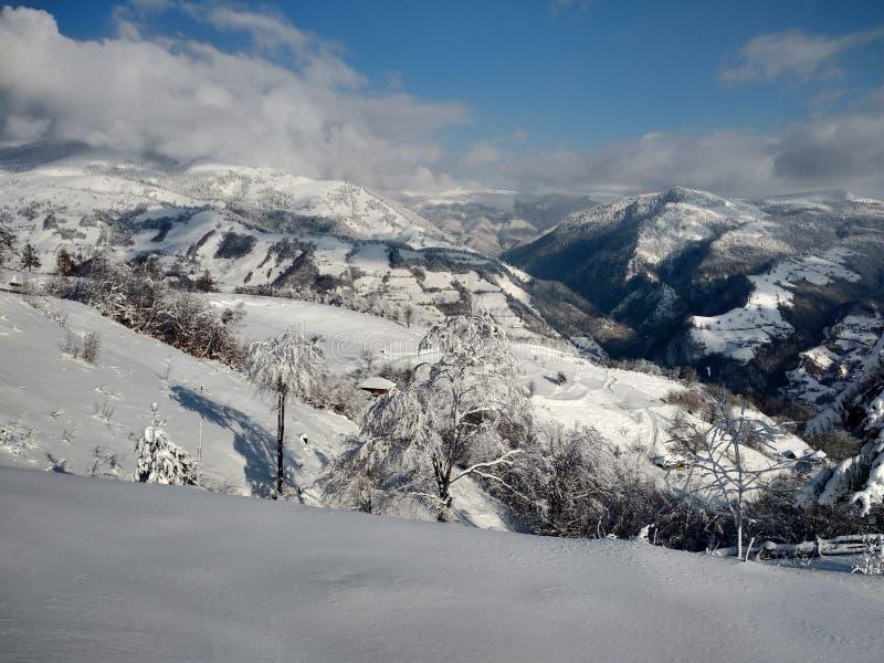 Beautiful winter landscapes with mountains and snow-laden trees in the village of Parva, Romania, Transylvania. Foto tomada en Enero 2019, en pueblo de parva stock photo
