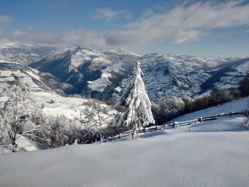 Beautiful winter landscapes with mountains and snow-laden trees in the village of Parva, Romania, Transylvania. Foto tomada en Enero 2019, en pueblo de parva royalty free stock images