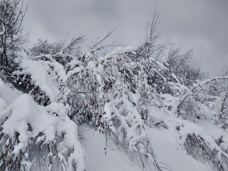 Beautiful winter landscapes with mountains and snow-laden trees in the village of Parva, Romania, Transylvania. Foto tomada en Enero 2019, en pueblo de parva stock images