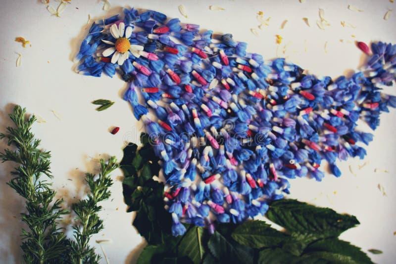 Foto una muchacha de los pétalos de las flores, imagen de archivo