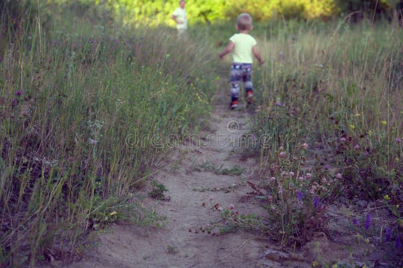 Foto vaga della passeggiata del padre e del figlio in natura su una sera soleggiata fotografia stock libera da diritti