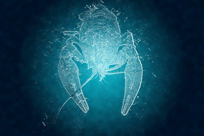Foto van de rivierkreeften die van ijs worden gemaakt vector illustratie