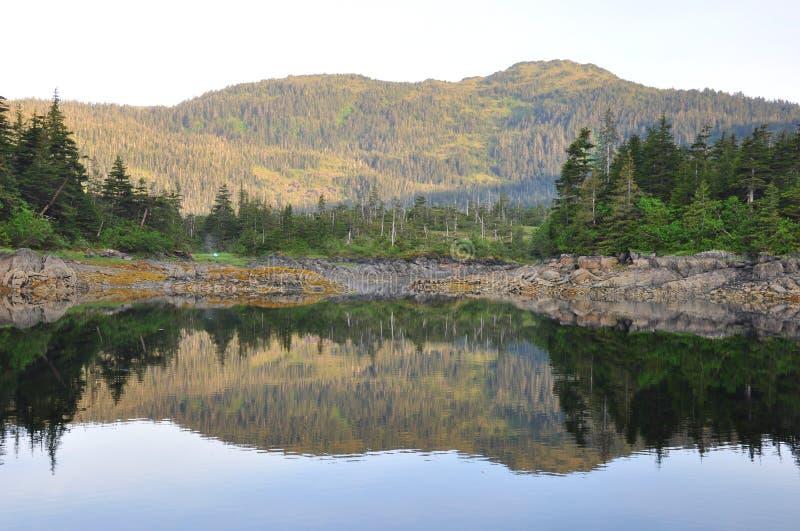 Foto van een berg en bomen die in het water refelcting royalty-vrije stock fotografie