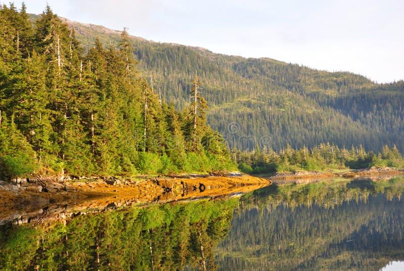 Foto van een berg en bomen die in het water refelcting stock foto's
