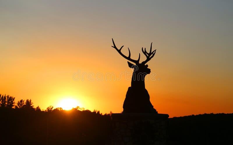 Foto van een mooi zonsondergangplatteland over de gebieden stock foto's