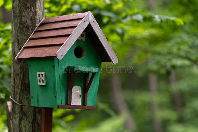 Foto van houten vogelhuis in koud de zomerbos stock afbeeldingen