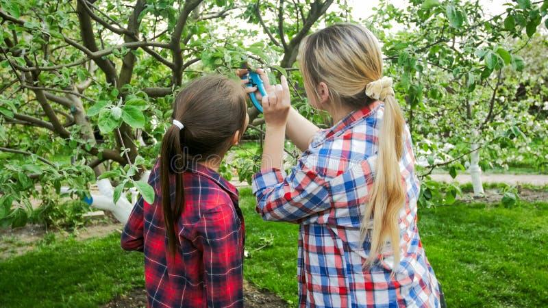 Foto van jonge vrouw met dochter die bomen controleren paraites royalty-vrije stock afbeelding