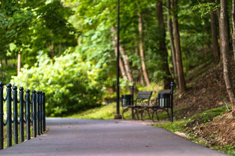 Foto variopinta della strada in un parco, fra il legno - con i banchi di parco dal lato con spazio per testo fotografia stock libera da diritti