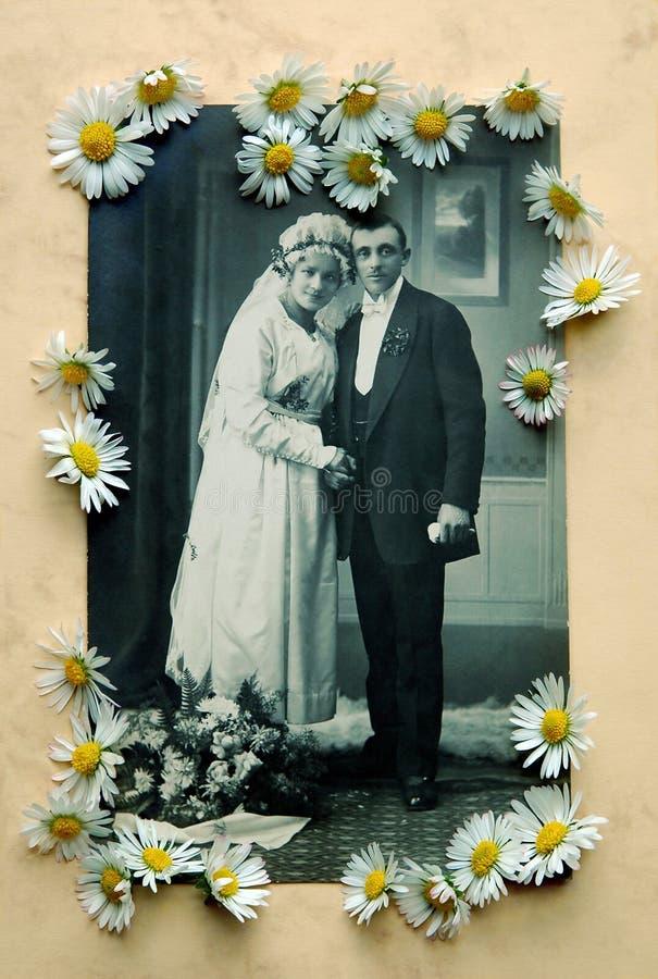 Foto velha do casamento com margaridas ilustração do vetor