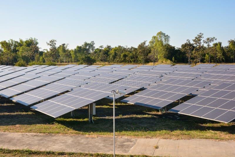 Foto-voltaische Solarenergie täfelt Bauernhof stockfotografie
