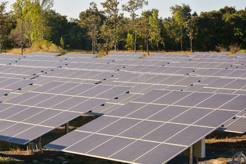 Foto-voltaische Solarenergie täfelt Bauernhof stockfotos