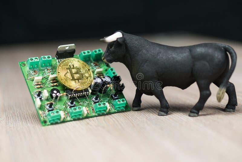 Foto von Bargeld Bitcoin oder Bitcoin auf elektronischer Schaltung, Computerteil und Stier nahe bei ihm stockbild
